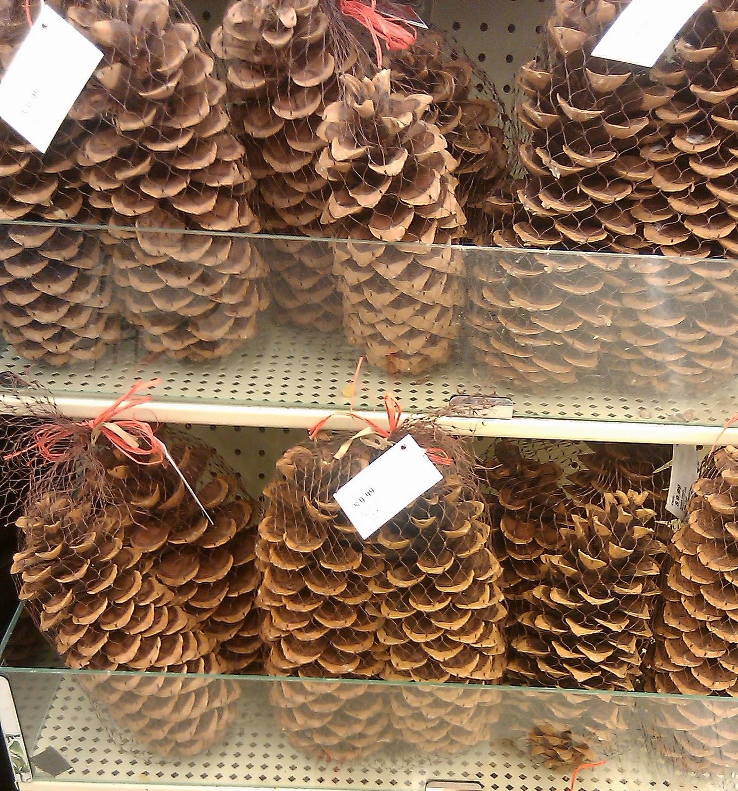 DIY Cinnamon Pinecones