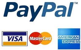 penyebab paypal tidak bisa kirim pembayaran