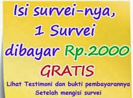 http://www.idsurvei.com/survei/bayyz