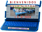 Aula Virtual 2024