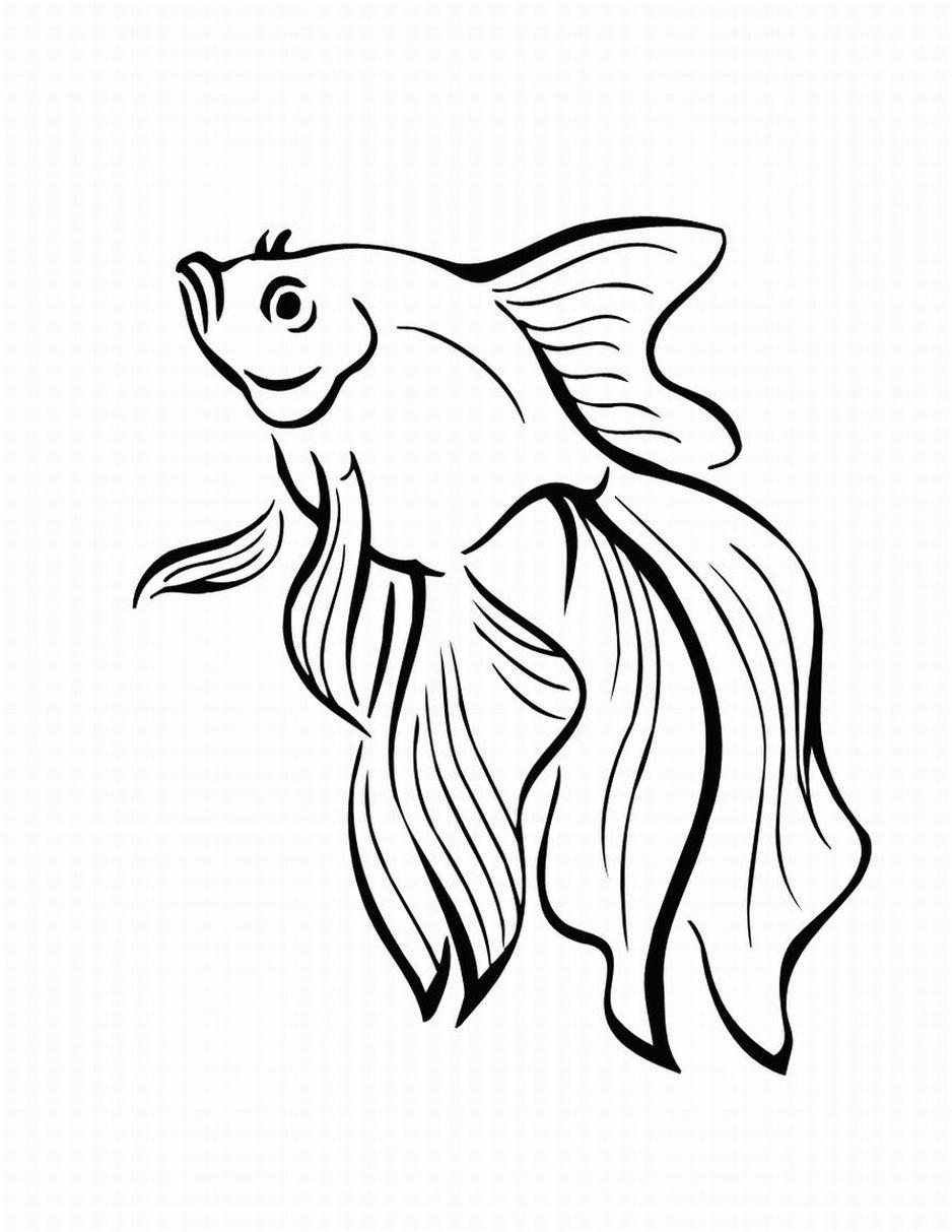 Pescado Dibujos Para Colorear | Dibujos Para Colorear Imagen