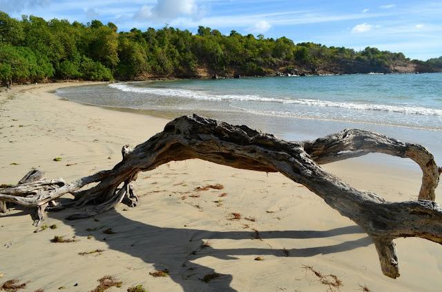 Praia em Grenada