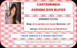 Minha carteirinha Agenda dos Blogs