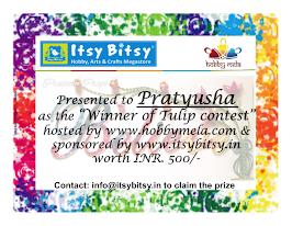 Hobby mela contest winner