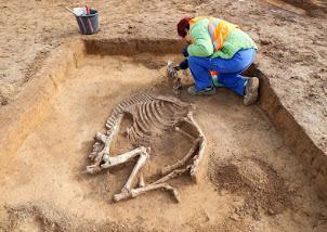 Découverte de 15 tombes mérovingiennes en Allemagne