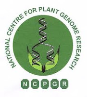 Jobs of Junior Research Fellow in National Institute of Plant Genome Research-NIPGR --Sarkari All Jobs