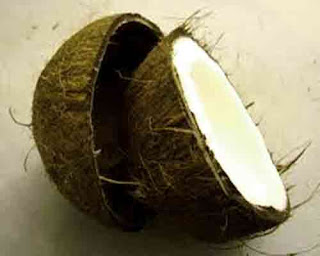 health_benefits_of_eating_coconut_fruits-vegetables-benefits.blogspot.com(3)