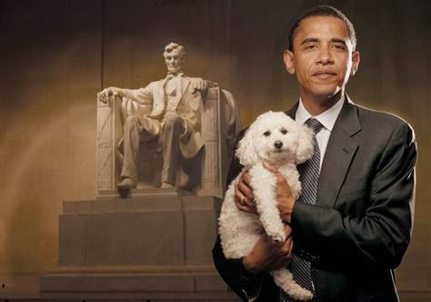 obamas essay on lincoln Following is a plagiarism free essay example about the presidency of barack obama be sure to use this custom written paper to your advantage.
