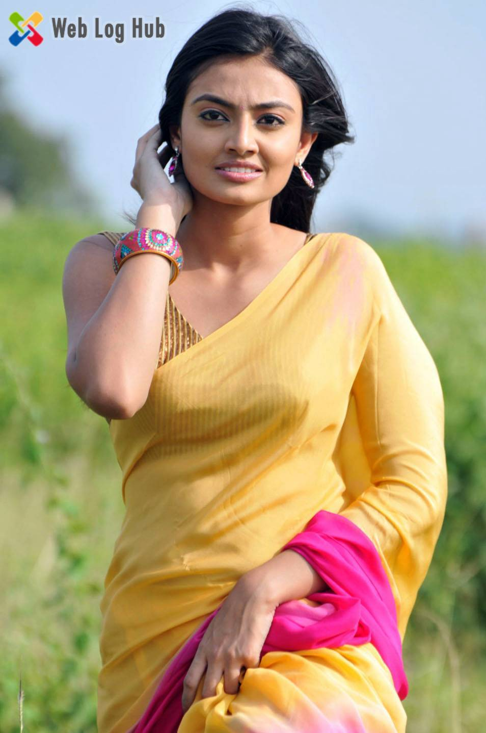Slim Actress Nikitha Narayan Hot Photo Still in Transparent Yellow Saree - Web Log Hub