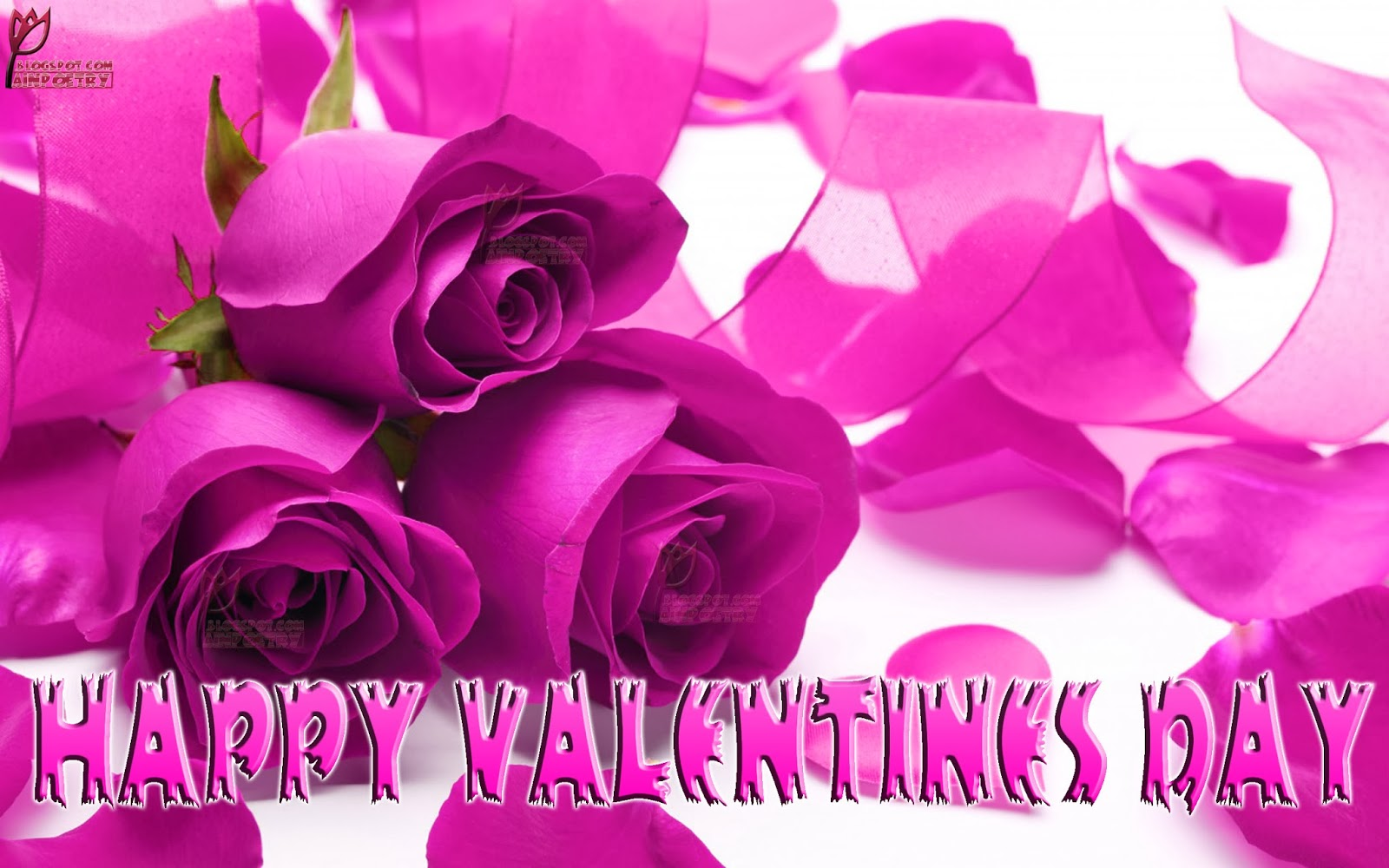 Happy-Valentines-Day-Wishes-Wallpaper-With-Flowers-Image-HD-Wide