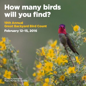 2016 Great Backyard Bird Count