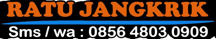 RatuJangkrik.com | Jual Telur Jangkrik Berkualitas Bagus