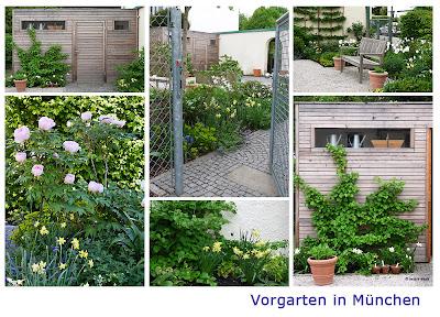 Gartenblog geniesser garten 09 01 2010 10 01 2010 - Vorgarten pflegeleicht ...