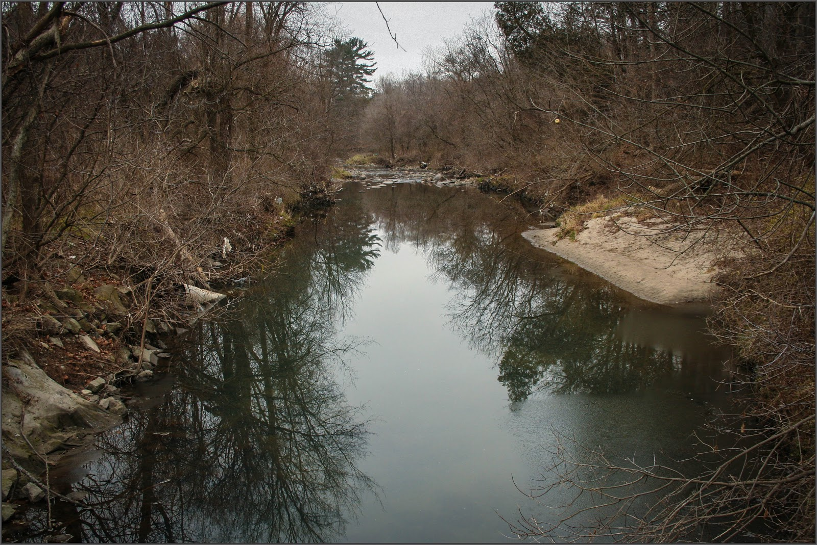 Mishy\'s Corner of the World: Highland Creek Watershed (Morningside Park)