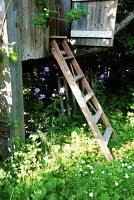 Trädgårdsbloggare uppdelade efter odlingszoner