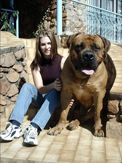hewan terbesar di dunia