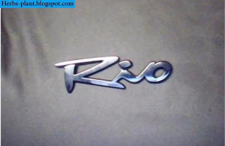 Kia rio car 2013 logo - صور شعار سيارة كيا ريو 2013