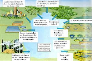 Alteraciones en los ciclos del agua