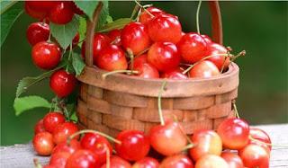 Manfaat buah cherry untuk kesehatan