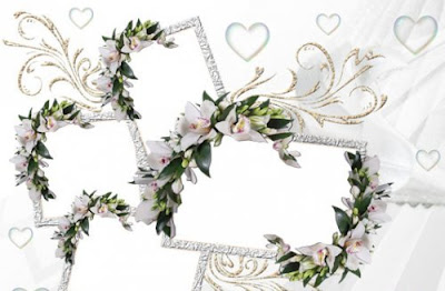 wedding frame, frame wedding, frame pernikahan, bingkai pernikahan, bingkai, bingkai vektor, bunga bingkai, dalam bingkai