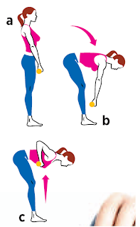 Straight-Leg Deadlift with Row all fitness Hold a pair of dumbbells in front of your thighs and stand with your feet hip-width apart (a). Bend forward and lower the weights until your back is parallel to the ground, keeping your back flat and weights close to your body (b), then bend your elbows and pull the dumbbells up toward your chest (c). Return to start. That's one rep.