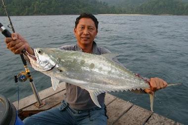 Ikan Talang