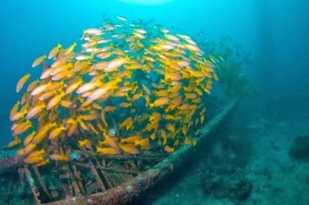 albergo impianto di trivellazione, Malesia, diving