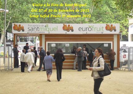 Visita a la Fira Sant Miquel del 2º Grup de Sefed Fruits 2012