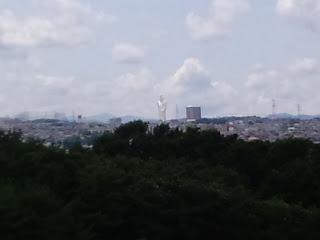 写真:屋上から遠くに見える白い巨大な観音像