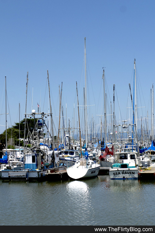 single women in moss landing Moss landing boasts numerous delightful, critically acclaimed restaurants - many restaurants purchase their seafood directly from the local commercial fishermen.