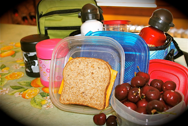 lunch bag and containers