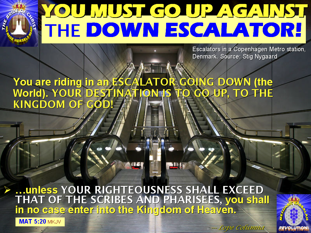 """a social experiment on going in the opposite direction of an escalator This is a prime example of taking the """"going green"""" theme too far (h/t: st reader and nyc residentâ leslie): the metropolitan transportation authority's experiment to introduce 35 """"green"""" escalators in four subway stations started with a lurch on monday."""