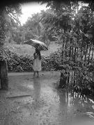 RAIN PHOTOS FROM KERALA