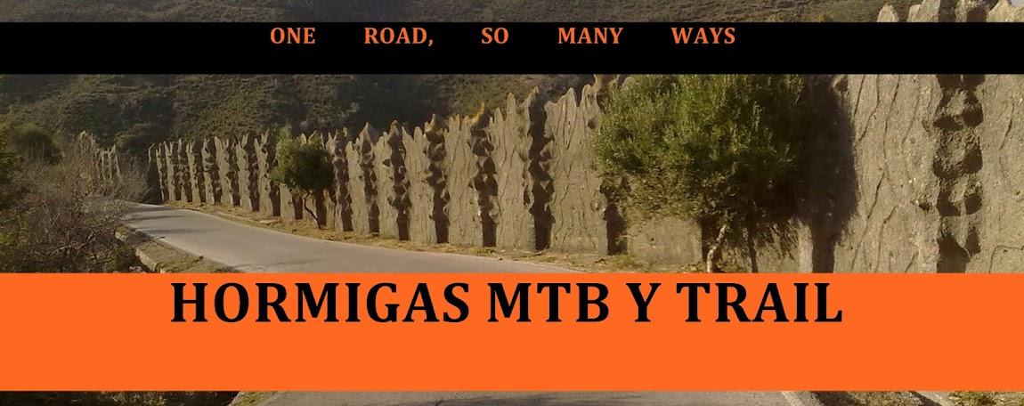 Hormigas MTB