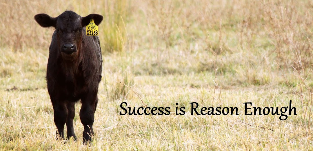 Success is Reason Enough