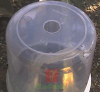 Cara Pembuatan Sarang Kroto Menggunakan Toples