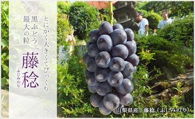 http://risouen.jp/SHOP/DAB3.html