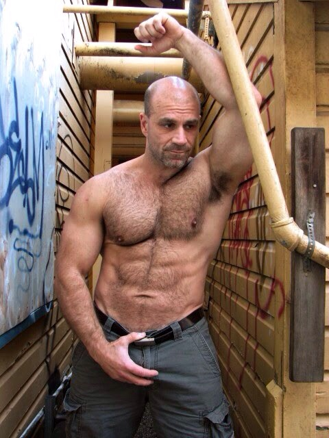 Love hairy muscled gay porn stars was trying