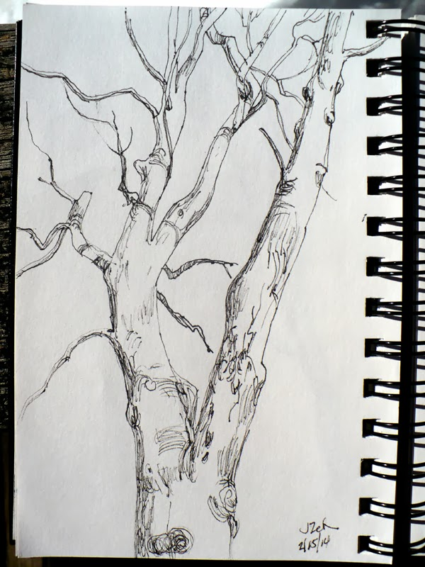 Tree in winter pen and ink sketch