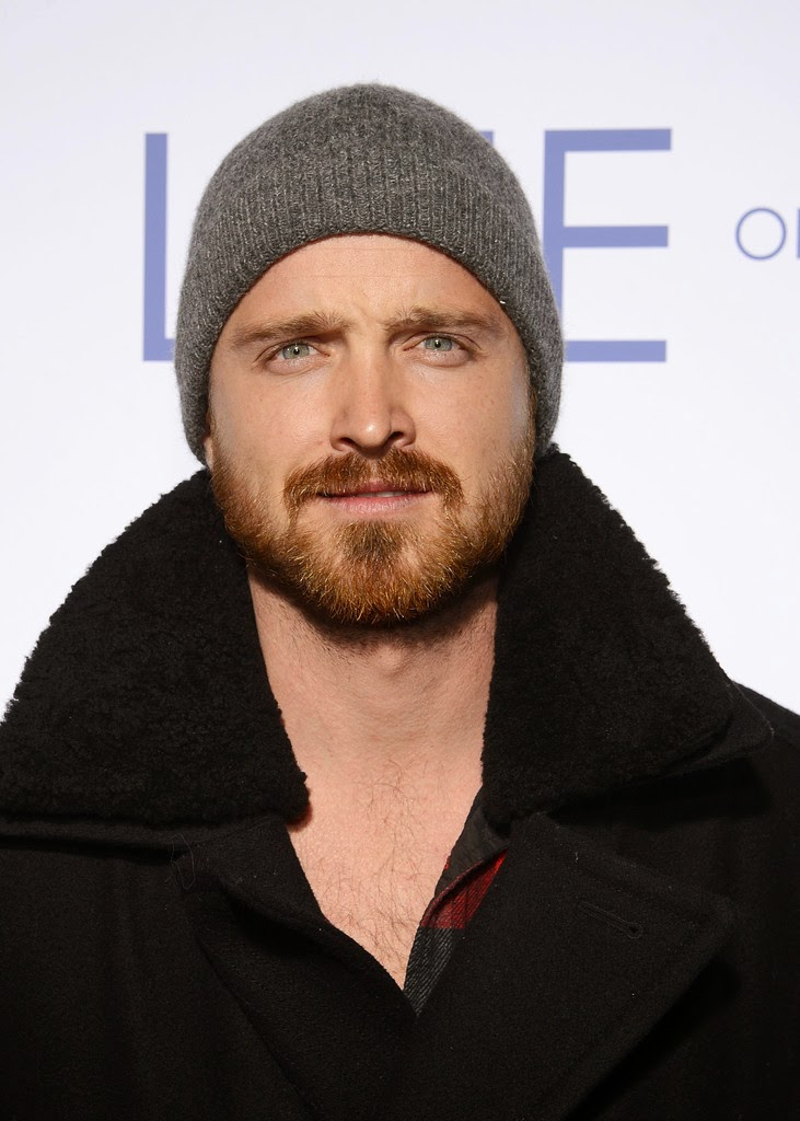 Celebs with beards: The Gallery No. 2