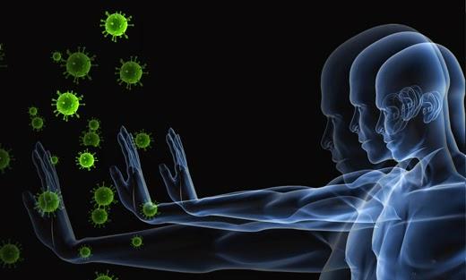 Makanan Yang Boleh Menambah Kekuatan Imunisasi Badan