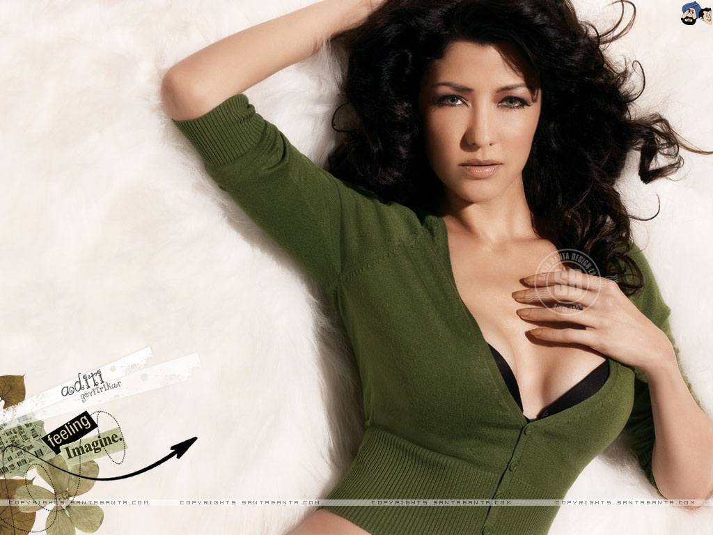 Aditi Govitrikar Nude Photos 18