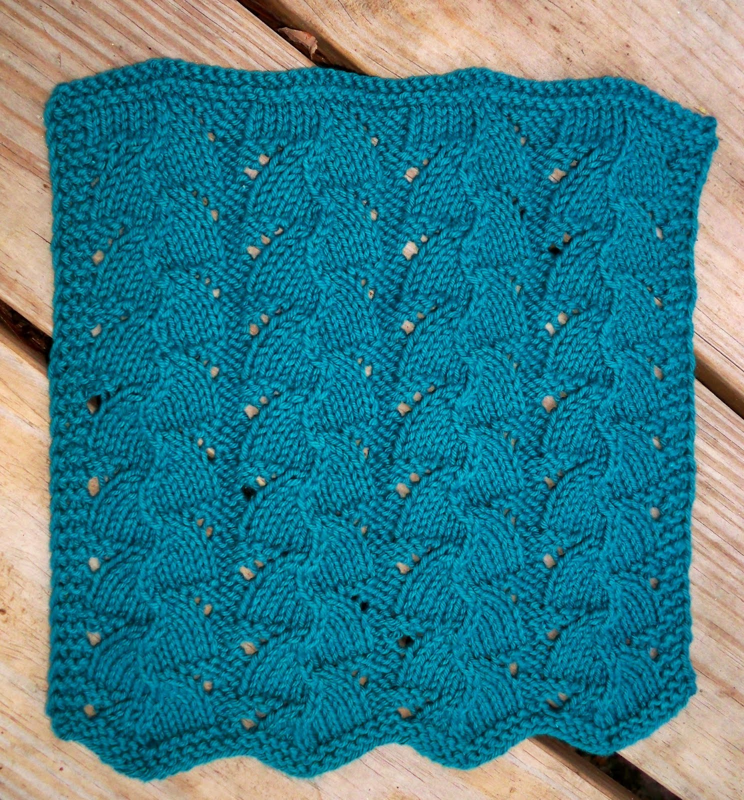 Sara\'s Colorwave Blog: MAIDENHAIR FERN DISHCLOTH
