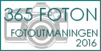 365 Foton