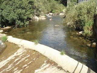 Escala para paeces en el rio