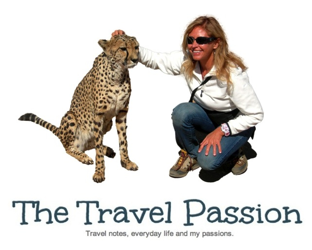 The Travel Passion