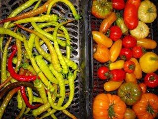 Feferoni i paprike download besplatne pozadine slike za mobitele