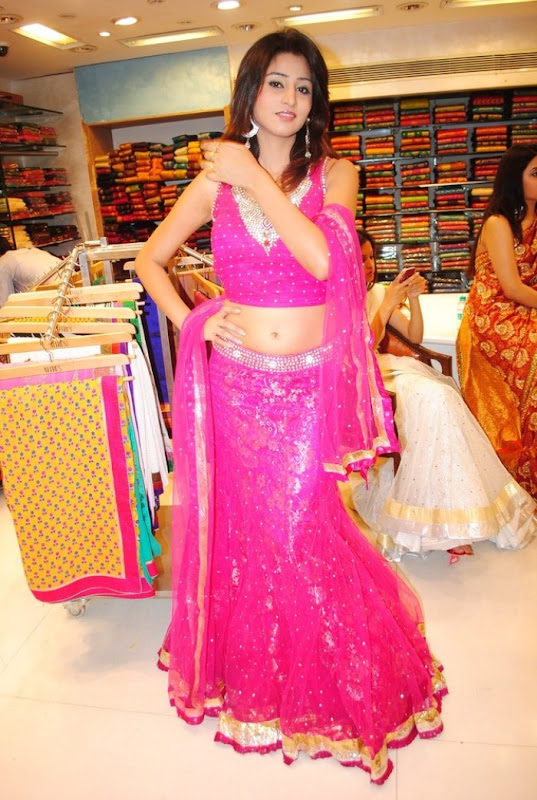 Hyderabad New Sexy Model Shamili Cute Navel Show unseen pics
