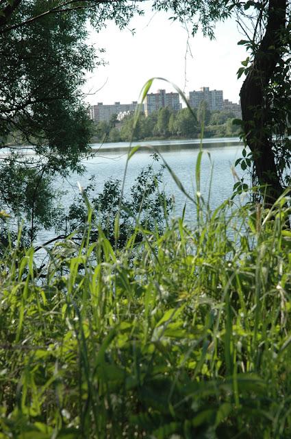 Фото Виталия Бабенко: Киев, у озера Алмазного