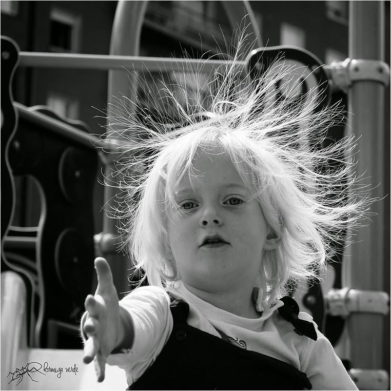 amateur photographers, Best Photo of the Day in Emphoka by Hormiga Verde, https://flic.kr/p/nhWuWi